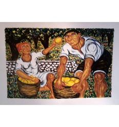Raccoglitori di limoni